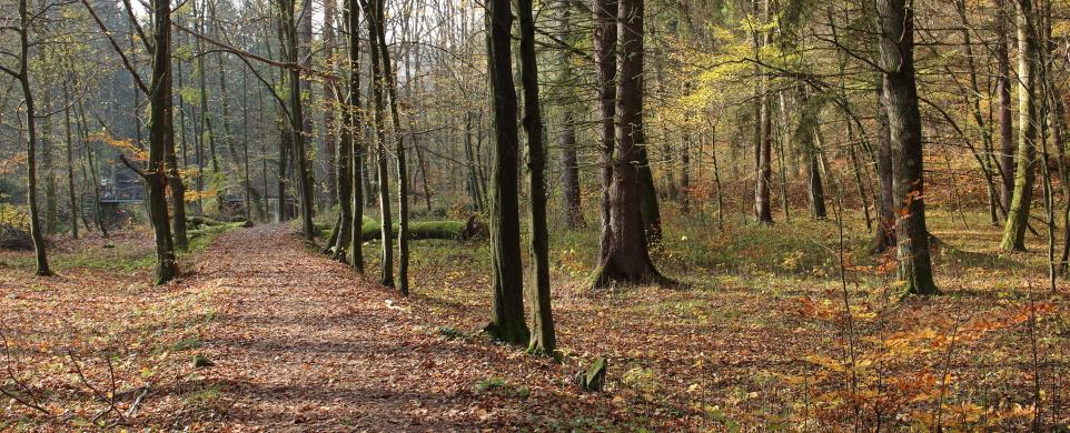 Podzimní Krkanka a Strádovské Peklo